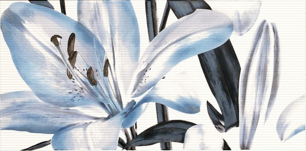 Decor Allegro Azul Flor 1  25x50 декор
