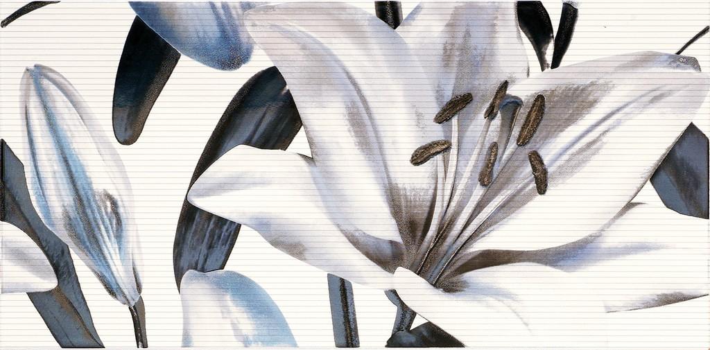 Decor Allegro Azul Flor 2  25x50 декор