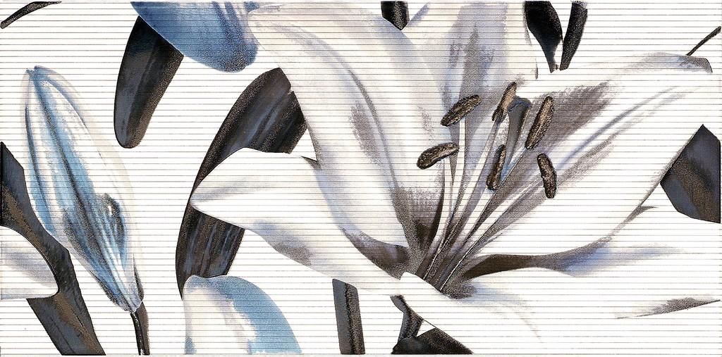 Decor Allegro Titanio Flor 2  25x50 декор