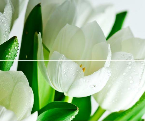 Arco Digital Tulipany 50x60 панно