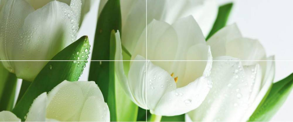 Arco Digital Tulipany 50x120 панно