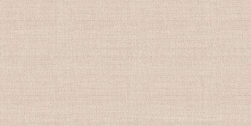Asteria TWU09ATR044 24,9х50 плитка настенная